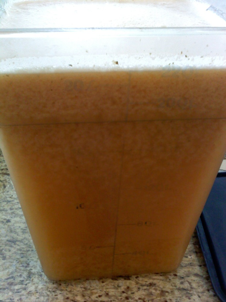 Cantaloupe Wine (3/4)